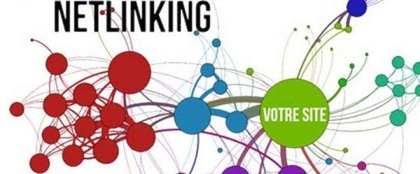 netlinking_definition